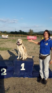 Leo-Asd-Il-lupo-Centro-Cinofilo-Toscana-Firenze-22